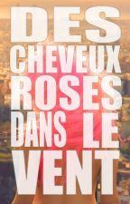 DES CHEVEUX ROSES DANS LE VENT by hanktheangry
