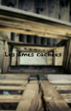 Les âmes cachées by Streetwriter