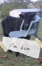 i'm dum by Iodges
