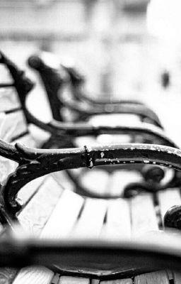 Đọc truyện hopega | vụn