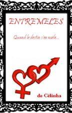ENTREMÊLÉS / QUAND LE DESTIN S'EN MÊLE by Celinha74