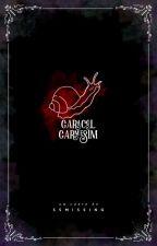 Caracol Carmesim  by SSMissing