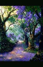 El bosque encantado ✨❇💫 by koizumi_risa3