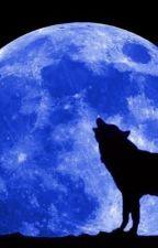 Running With Werewolves (Teen Wolf Fanfic) by umhimynameischarlie