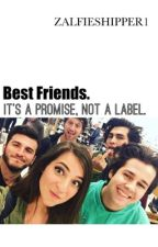 Best Friends. It's a Promise, Not a Label. ((Zabbie and friends// vlogsquad)) by zalfieshipper1