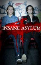 Insane Asylum      Bård & Vegard Ylvisåker      by Cautionlabel