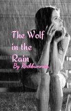 The Wolf in the Rain by TheeLuna