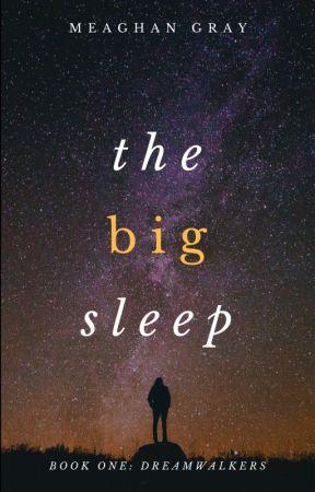 The Big Sleep (Dreamwalkers) by meaghankgray