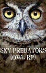 Sky Predators - Owl Rp by AllAboutSherlock