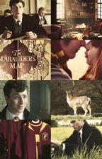 •Dear Evans...•James Potter by La_Purosangue