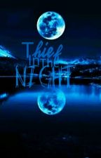 ~*Thief In The Night*~ Minecraft diaries DISCONTINUED SORRY by Yuki-Of-Tryvore