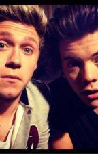 Fan Fiction: Niall & Harry Imagine by Run_DET