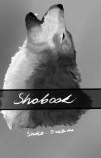 Shobook ; Artbook 2 [⭕] by Shoko_Ookami