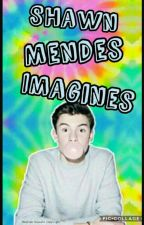 Shawn Mendes imagines//Requests Open by Graysons_Face