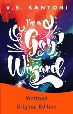 I'm a Gay Wizard by VSSantoni