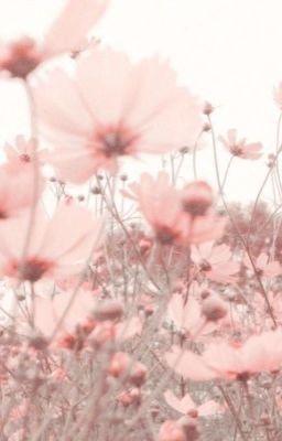 Đọc truyện jeonrim ⤬ between you & me