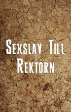 Sexslav Till Rektorn  by dirty_stuff