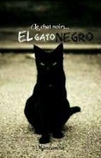 El Gato Negro (Le chat noir)  by ByManzanita