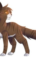 Warrior cats x reader  by milixioooo_Coleslaw