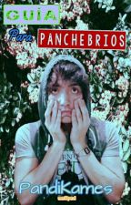 Guía Para Panchebrios || Yayo Gutiérrez by PandiKames