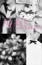 14 Días 《YoonKook》 by Misaki_511