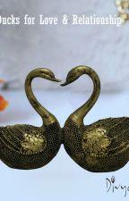 Feng Shui Mandarin Valentine Ducks for Love & Relationship by divyamantramail