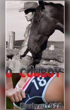 O cowboy  by biaabreu1928
