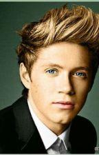 Niall Horan! The new teacher! by LisaMarieSchiemer
