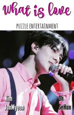 What is love *[SeHo] by PuzzleEntertainment
