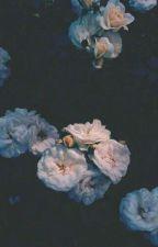 Soft Skin {Noiz X Reader lemon} by Yeong-gi