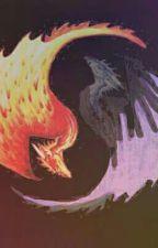 Gardiens Divin-Tome 1 : Les chevaliers dragon by ArthurAroubani