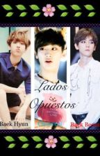 Lados Opuestos ㅊchanbaek / Mpreg (PROXIMAMENTE) by Sehunnieylulu