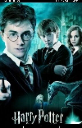 The Chosen Two (Harry Potter X Reader) Years 1-7 - Harry