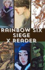 Rainbow Six Siege x Reader by AshenRainia