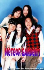 Meteor Garden [MG1] by Chiennaxxi
