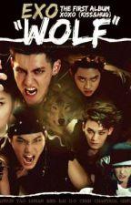 Werewolf saranghae Vampire?? ( EXO,B2ST-version) by ErynnJoanna