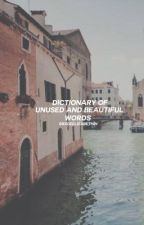 DICTIONARY OF UNUSED AND BEAUTIFUL WORDS by grxceelizabeth24