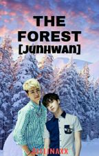The Forest [JUNHWAN] by Alelii_kay