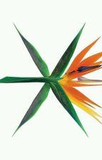 EXO Lyrics✨ by kpoplyric