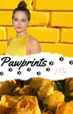 Pawprints {Harry Potter} by rosea-