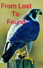 From Lost To Found (under major editing)  by Chellwolf