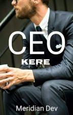 CEO Kere by meridian_dev