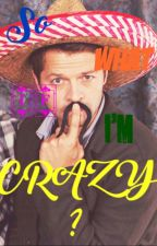 Rantbook - So What If I'm Crazy ? (MISHAPOCALYPSE) by ZazasMind