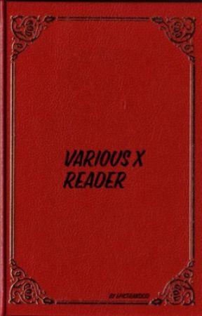 Various x Reader - Keith x Shiro's younger sister!Reader