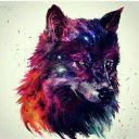 -Sky_Wolf-