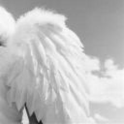 AngelicHero