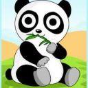 Annoying_Panda_Bear