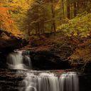 Autumn Smith
