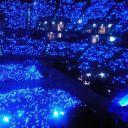 BlueJoyer