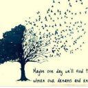 Daydream1011